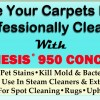 How To Make Your Carpets Look And Smell Professionally Cleaned