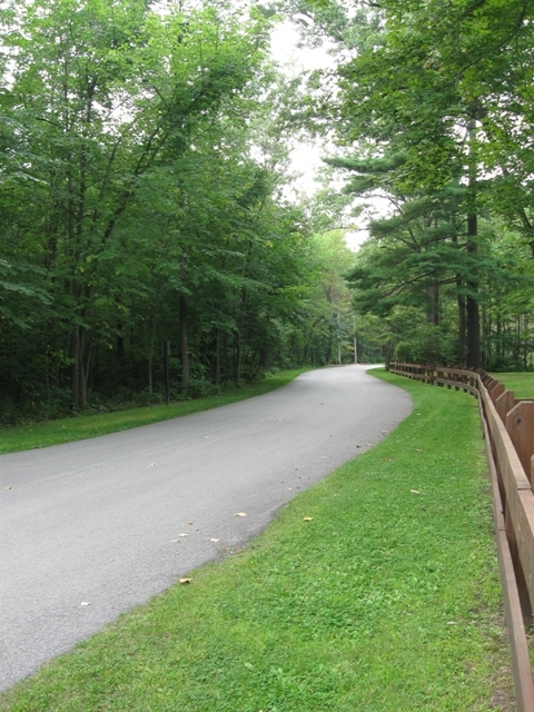 The road near Wilson Shelter