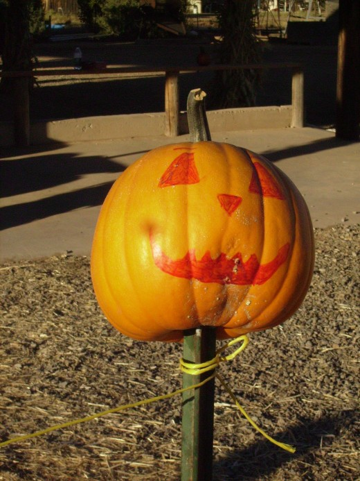 A Jack-O-Lantern greets visitors at a Pumpkin farm