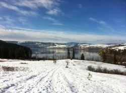 Kalmalka Lake at Cozens Bay, Vernon, BC - Photo taken by Kimberley Vico
