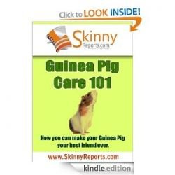 Guinea Pig Care 101: How you can make your Guinea Pig your best friend forever (Skinny Report) [Kindle Edition] Michelle Bosch (Author)