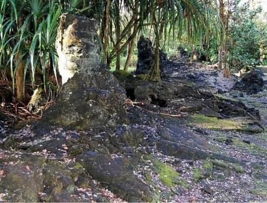 Lava Tree State Park Loop Trail