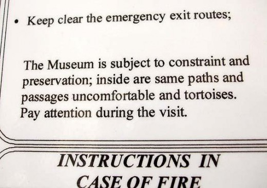 This really means that the twisty paths are tortuous. No tortoises here.