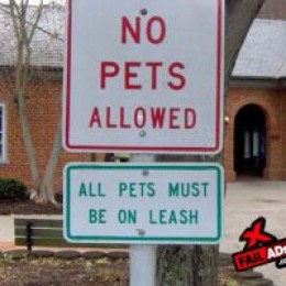 Leniency for pets with leashes.