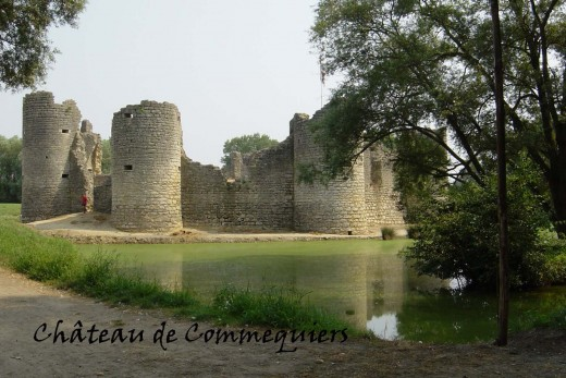 Chateau de Commequiers (a French castle in ruins).