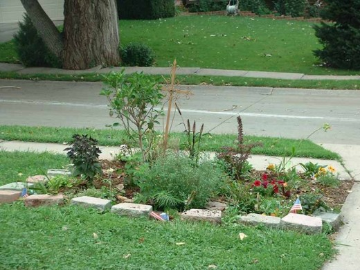 At my old home, a brand new bed by the driveway done in lasagna method with all perennials.