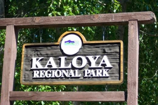 Kaloya Regional Park