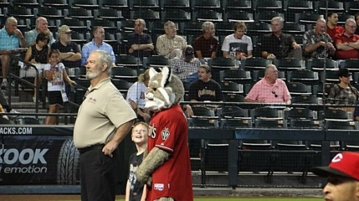 Baxter the Arizona Mascot
