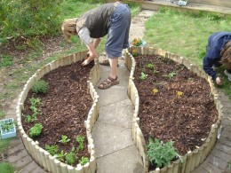Planting a raised bed garden by diroussel