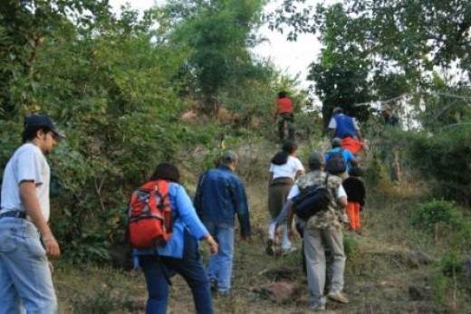 Tourists trekking in the jungle in India