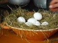 How Many Residual Income Sites Should You Write At: Splitting Your Eggs Into Different Baskets
