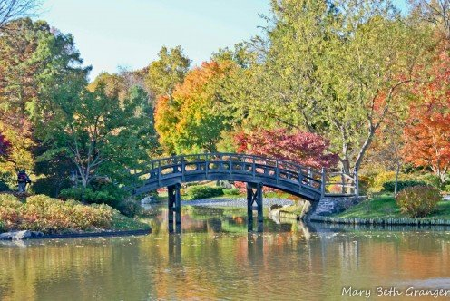 Bridge in Japanese Garden section