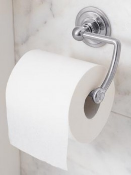 Toilet Paper - Unsanitary Compared to Puday Cups