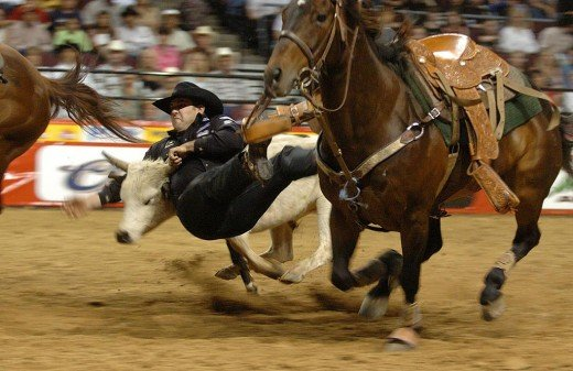 Steer wrestler Luke Branquinho at the Pace Picante Pro Rodeo Chute Out in Las Vegas.