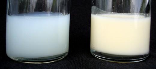 Expressed Milk