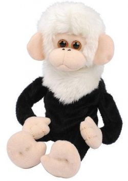 Dave The Funky Monkey