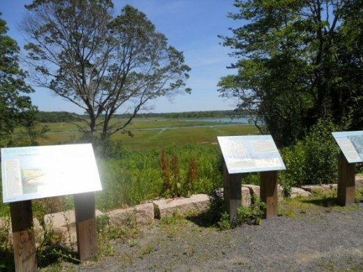 Interpretive signs -- as you look across the marsh