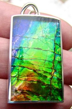 Unique Ammolite Jewellery