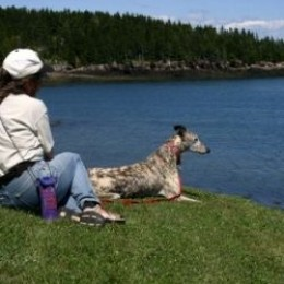 Dog and I watch for the tail of a whale.