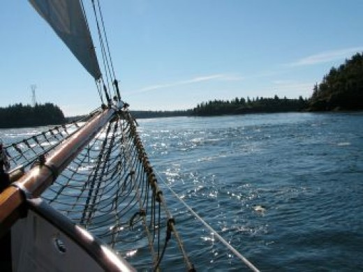 The Jolly Breeze tall ship takes us to the Bay of Fundy, by Mark Blevis