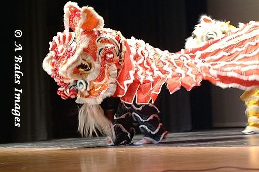 Vietnamese Lion Dance