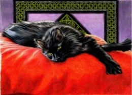 """Companion"", an original cat art drawing in prismacolor pencil by the author, sockii. On this page you will find a coloring page based on this image that you can color in yourself, along with many other pieces I've created. Enjoy!"