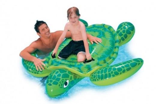 ride on sea turtle