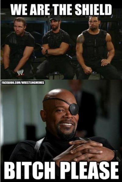 Shield   Fury thinks NOT