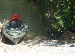 Kayaking at Emerson Point Preserve