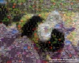 Bumble Bee Mosaic