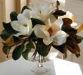 The Magnolia for Winter Home Decor