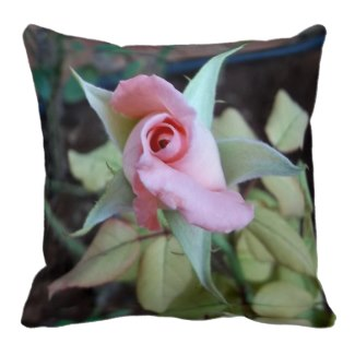 Pillow for your cat image rose