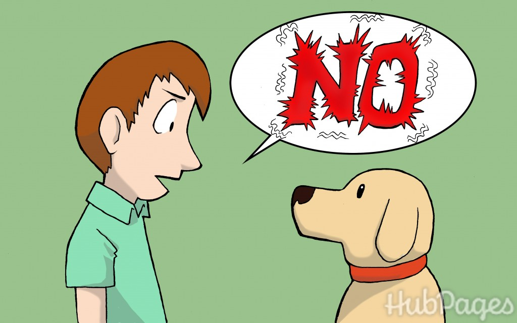 How To Get A Dog To Stop Pooping Inside