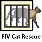 FIV Cat Rescue