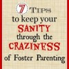 A Foster Girls Guide To Parents