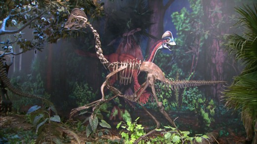 Cast of Anzu skeleton at the Carnegie Museum of Natural History in Pittsburgh. Mural in background by Bob Walters and Tess Kissinger.