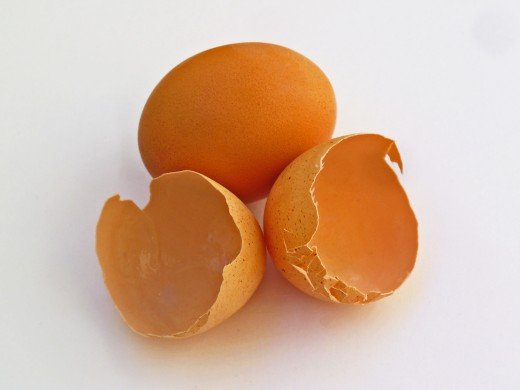 Eggshells contain phosphorus and magnesium, both essential elements for plant growth.