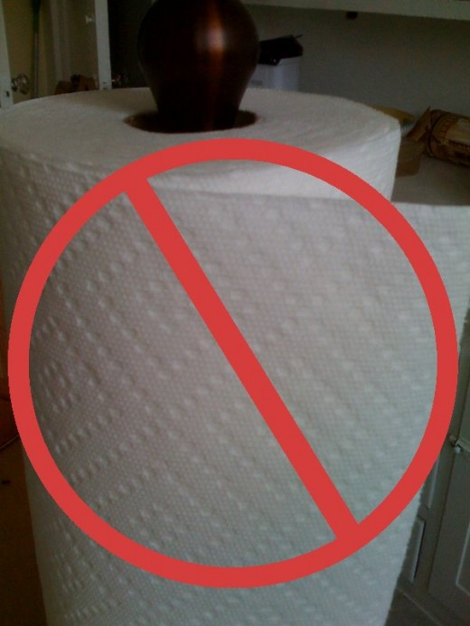 No more paper towels in our house! It was easier than we thought it would be.