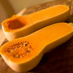 101 Recipes for Butternut Squash