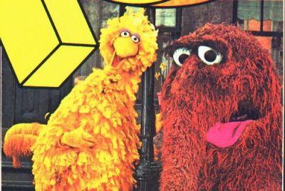 Only Big Bird Saw Snuffy - hallucinations?