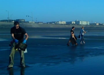 Volunteers on Ocean Beach San Francisco use hair mats to clean the oil
