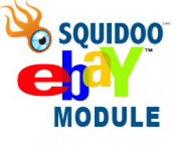 Getting the Best Results in the Squidoo Ebay Module