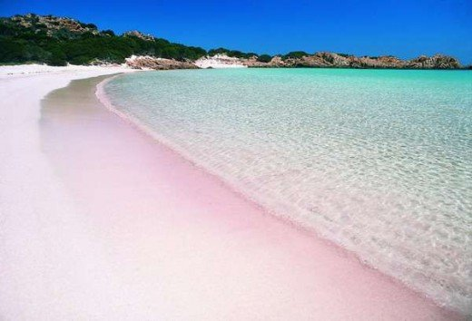 pink sand beach, vacation destination in komodo Island