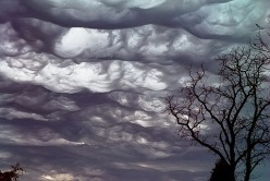Have You Seen An Undulatus Asperatus Cloud?