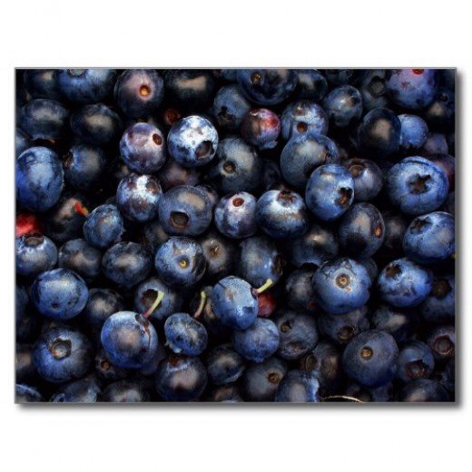 Fresh blueberries are delicious and nutricious.