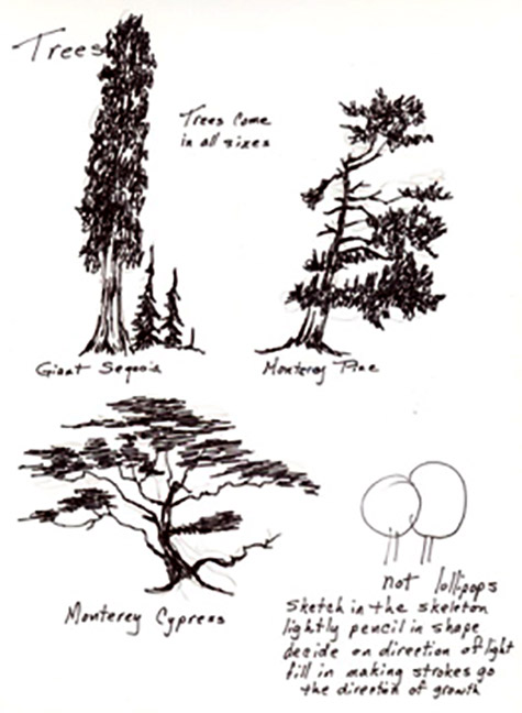 Tree shapes are perfect for scribble.