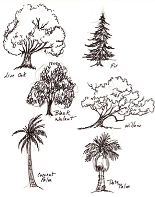 More tree shapes for scribble.