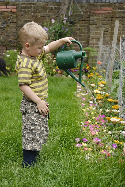 Small boy watering garden