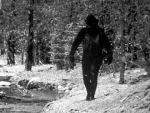 This picture is an obvious fake. Is there really any scientific evidence of Big Foot?