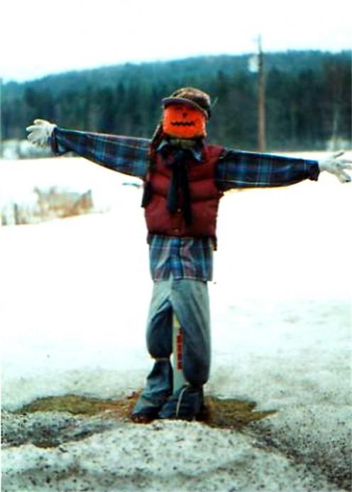 Faithful scarecrow